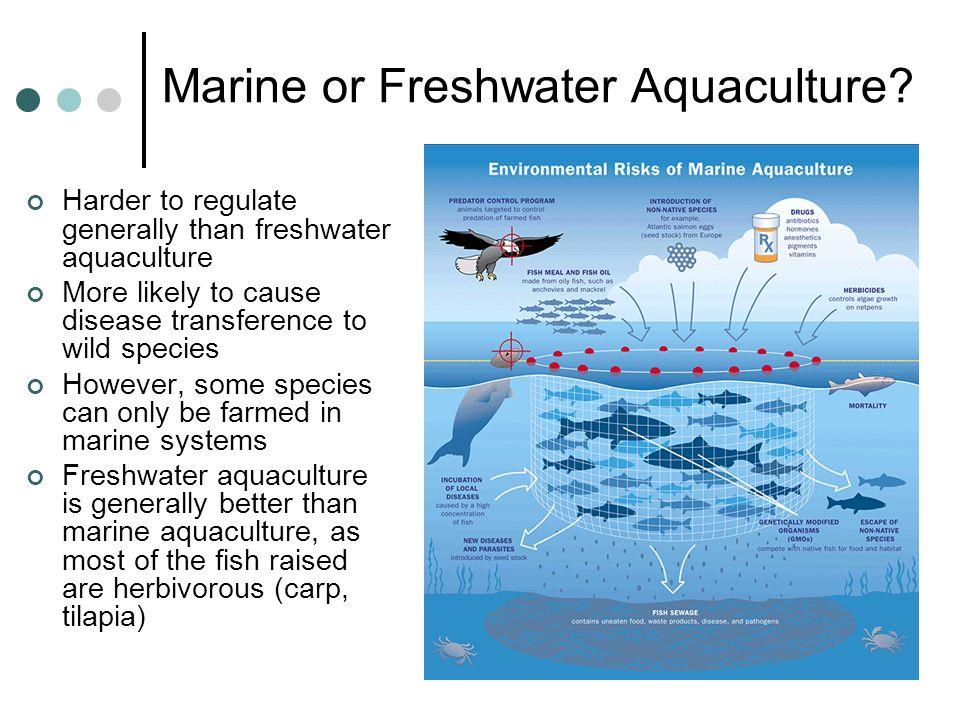 Marine or Freshwater Aquaculture
