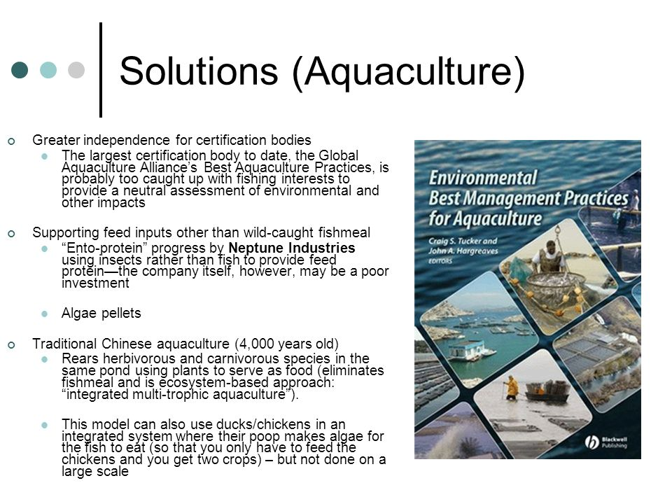 Solutions (Aquaculture)