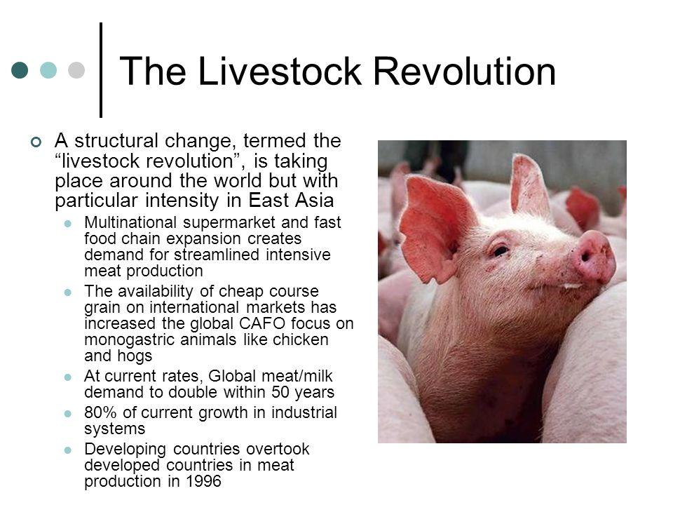 The Livestock Revolution