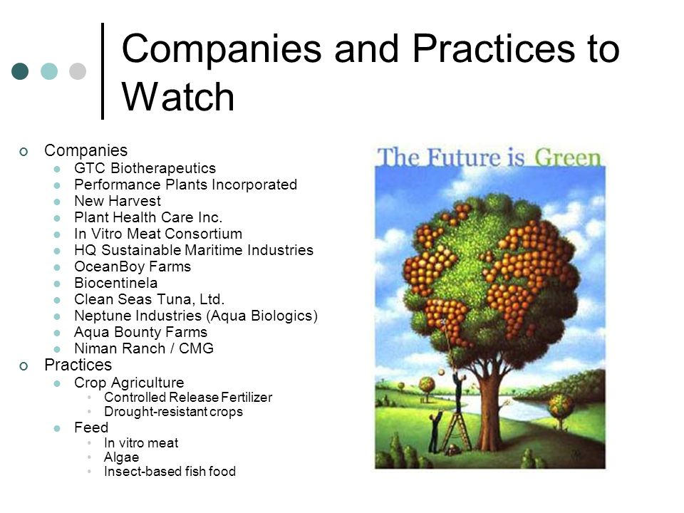 Companies and Practices to Watch