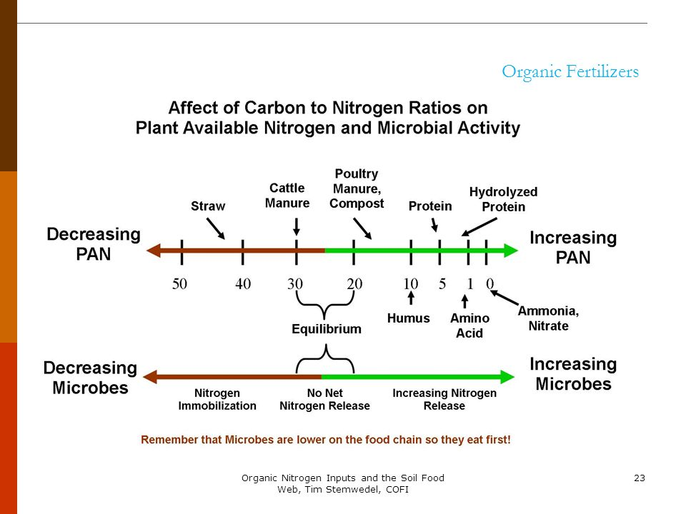 Organic Nitrogen Inputs and the Soil Food Web, Tim Stemwedel, COFI