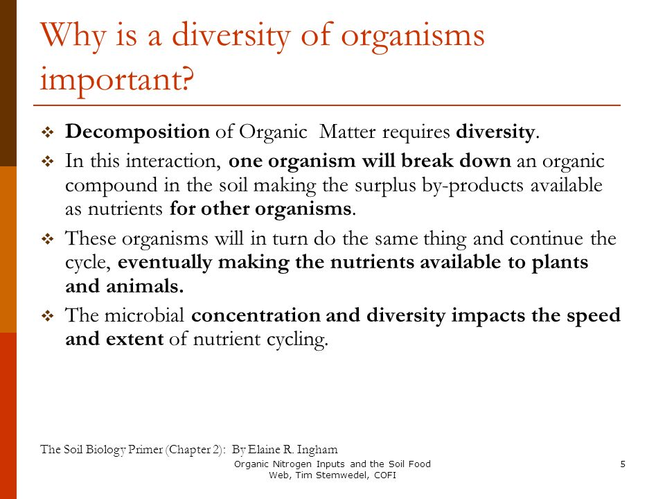 Why is a diversity of organisms important