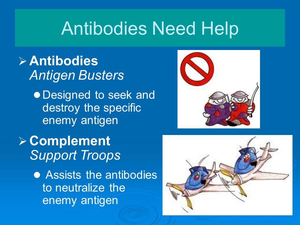 Antibodies Need Help Antibodies Antigen Busters