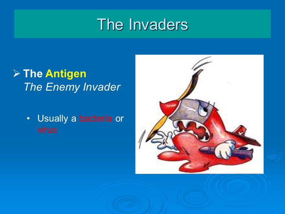 The Invaders The Antigen The Enemy Invader Usually a bacteria or virus