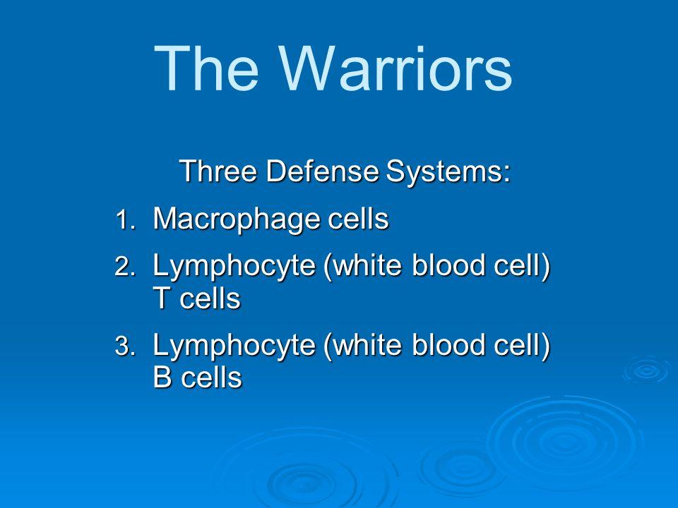 Three Defense Systems: