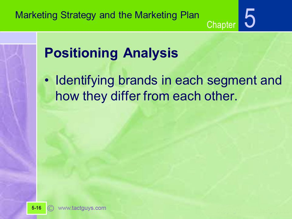 5 Marketing Strategy and the Marketing Plan. Positioning Analysis. Identifying brands in each segment and how they differ from each other.