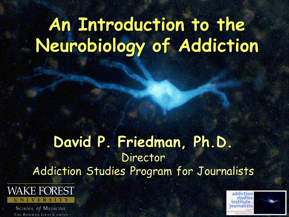 An Introduction to the Neurobiology of Addiction