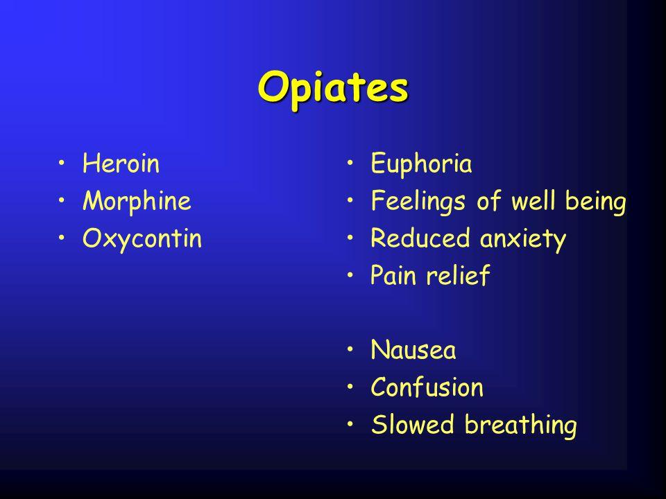 Opiates Heroin Morphine Oxycontin Euphoria Feelings of well being