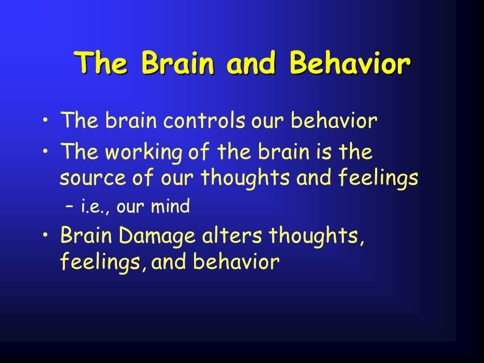 The Brain and Behavior The brain controls our behavior