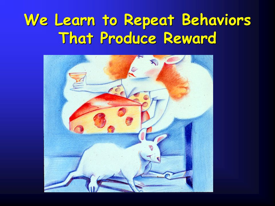 We Learn to Repeat Behaviors That Produce Reward