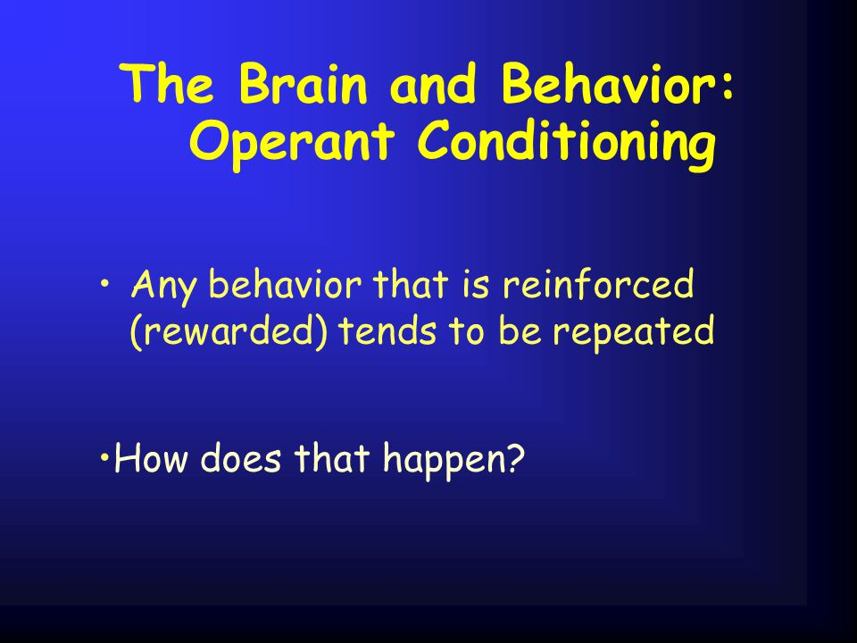 The Brain and Behavior: