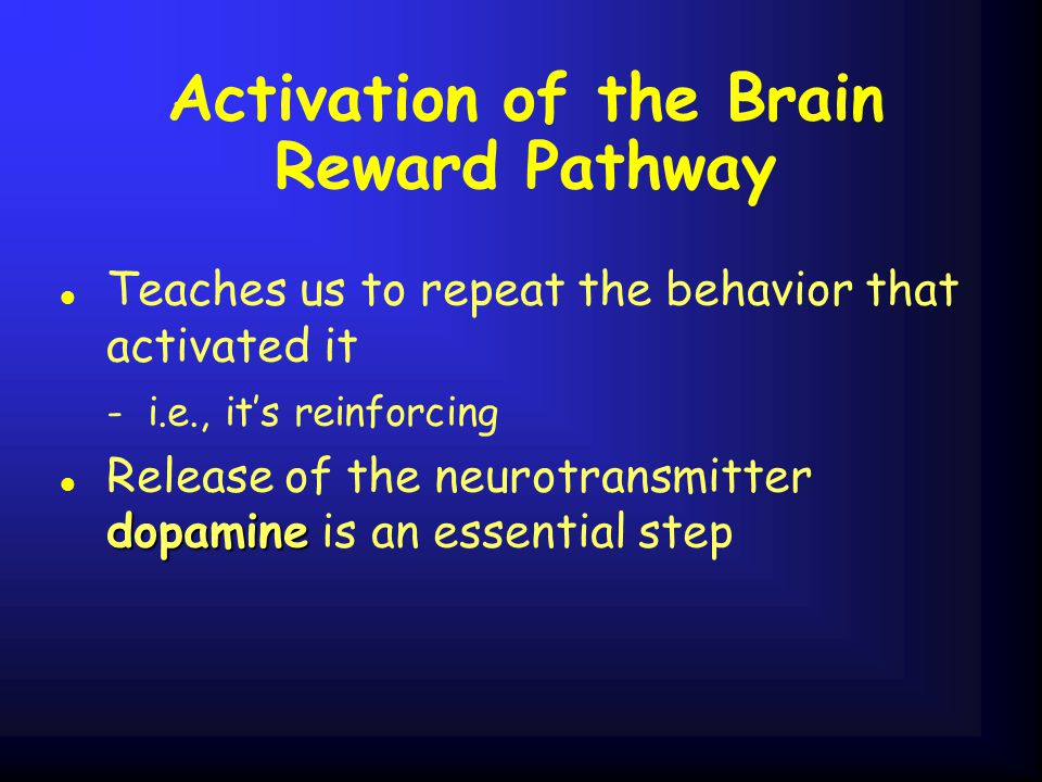 Activation of the Brain Reward Pathway