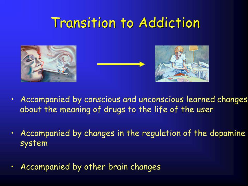 Transition to Addiction