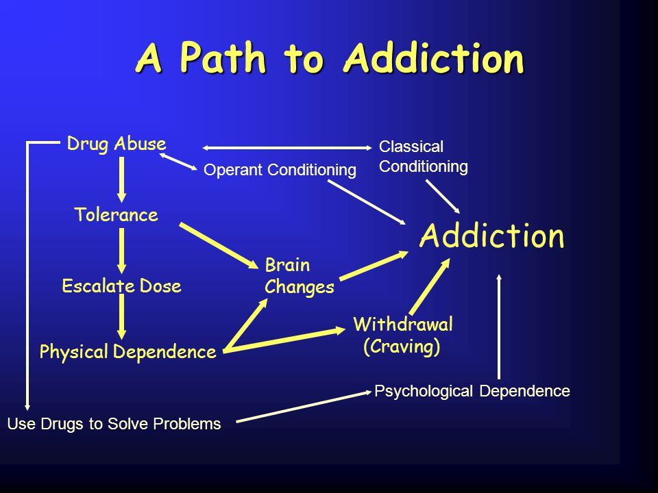 A Path to Addiction Addiction Drug Abuse Tolerance Brain Changes