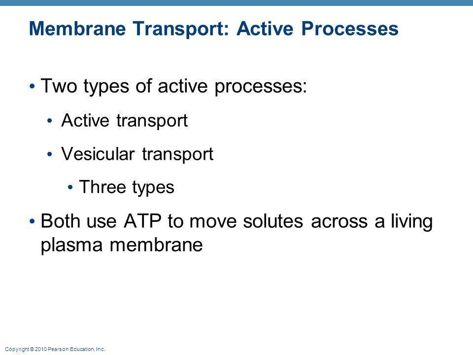 Membrane Transport: Active Processes