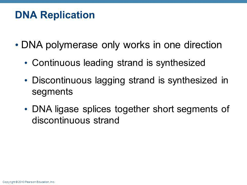 DNA polymerase only works in one direction