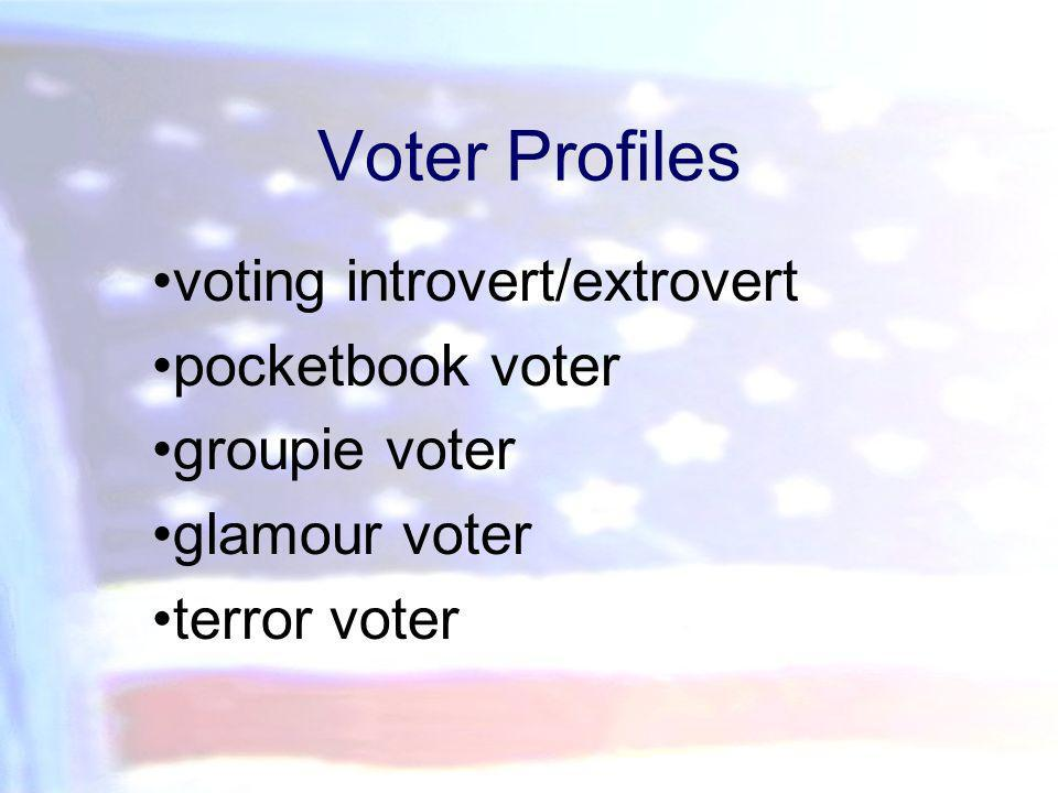 Voter Profiles voting introvert/extrovert pocketbook voter