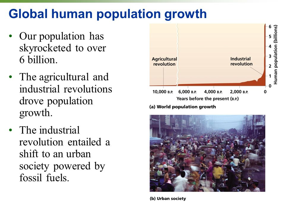 Global human population growth