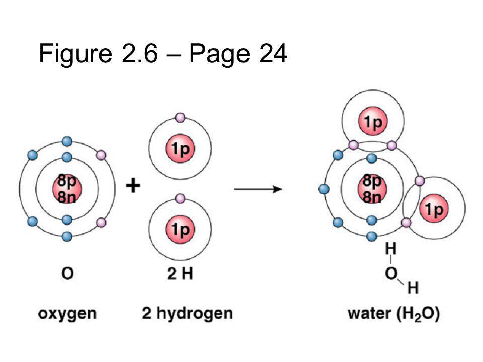 Figure 2.6 – Page 24