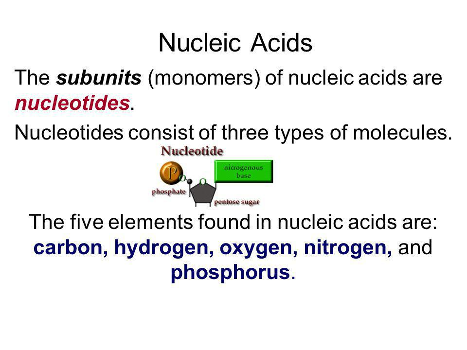 Nucleic Acids The subunits (monomers) of nucleic acids are nucleotides. Nucleotides consist of three types of molecules.