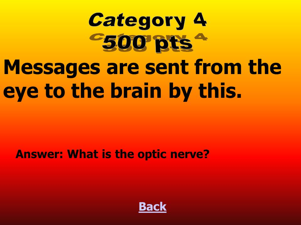 Messages are sent from the eye to the brain by this.