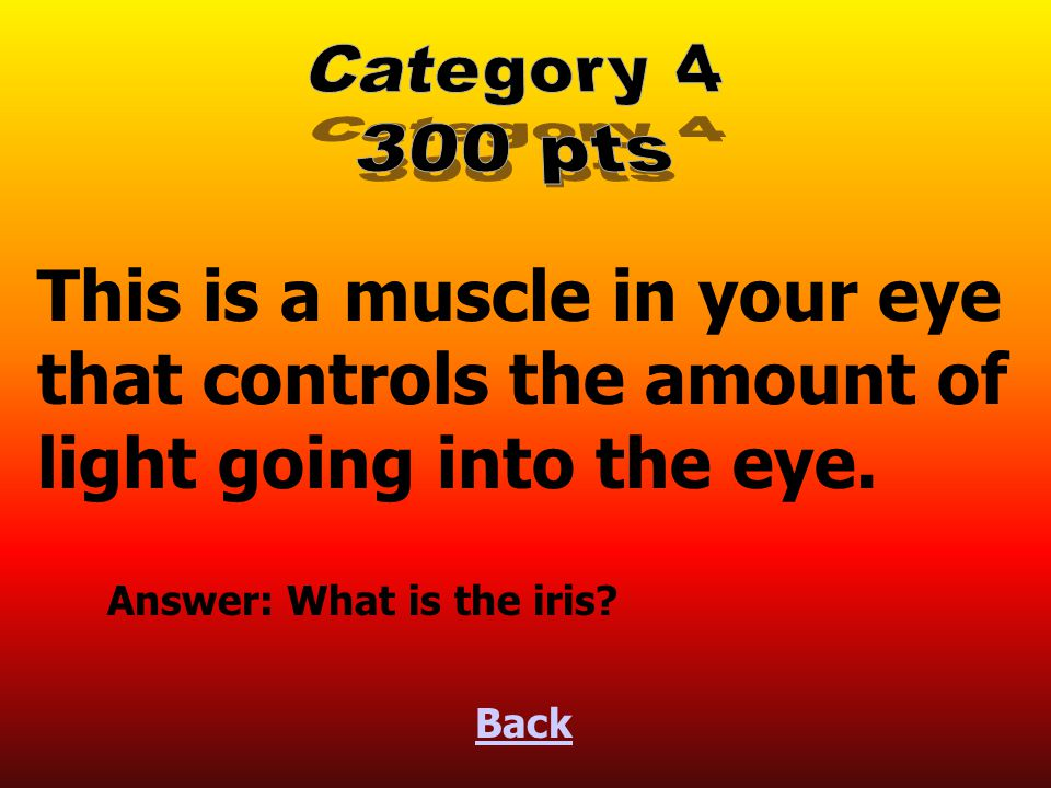 This is a muscle in your eye that controls the amount of