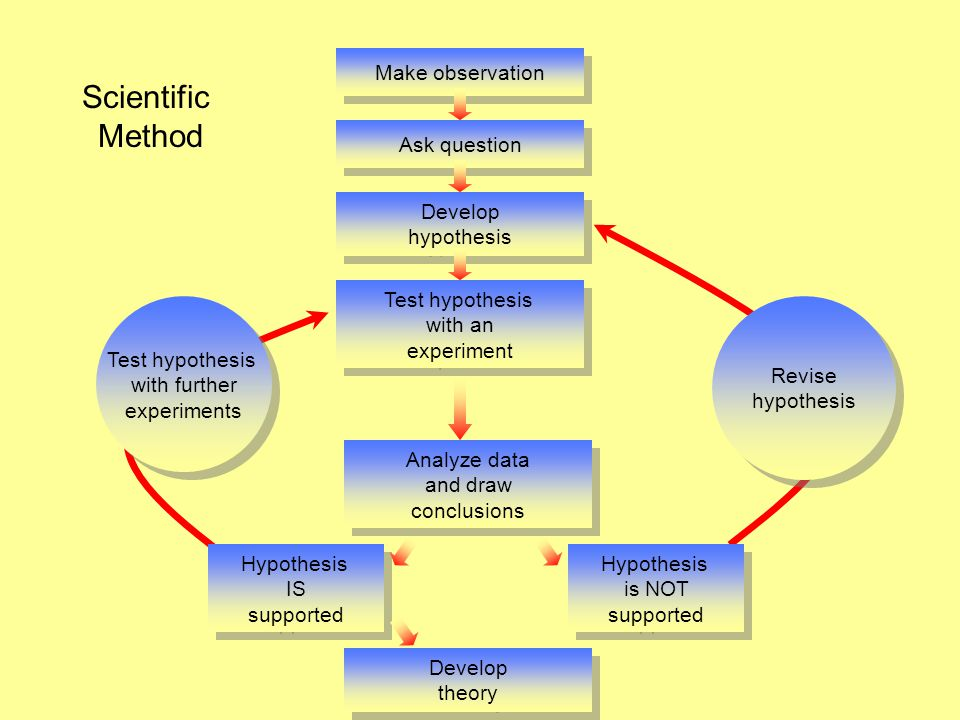 Scientific Method Make observation Ask question Develop hypothesis