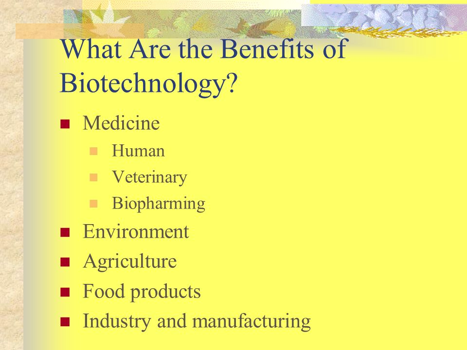 What Are the Benefits of Biotechnology