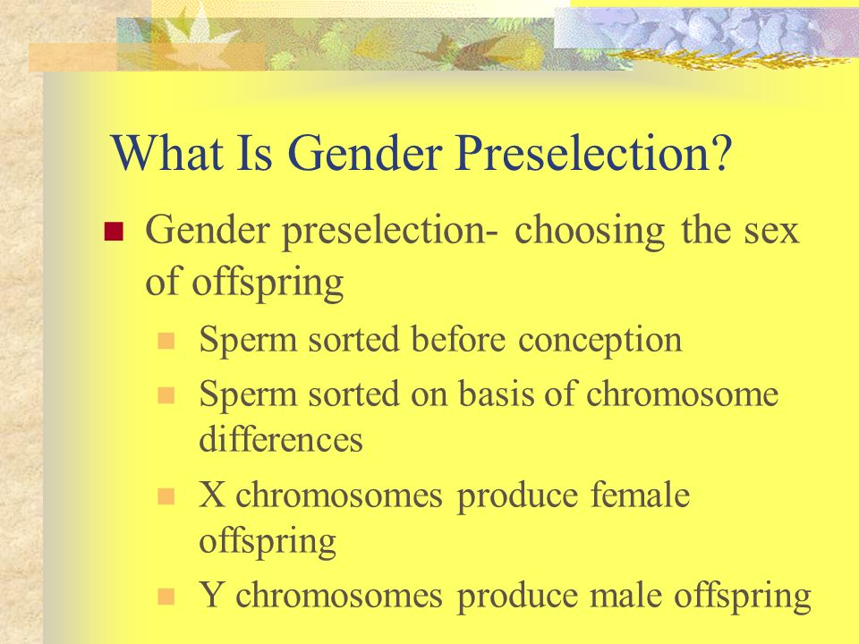 What Is Gender Preselection