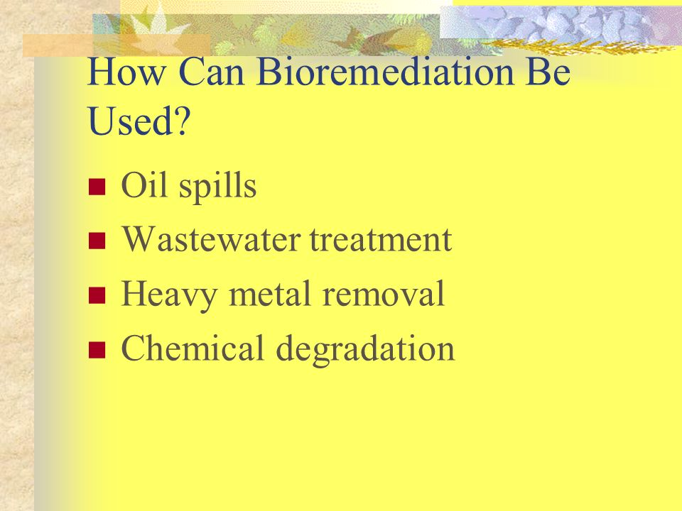 How Can Bioremediation Be Used