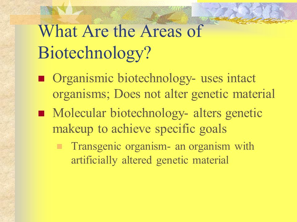 What Are the Areas of Biotechnology