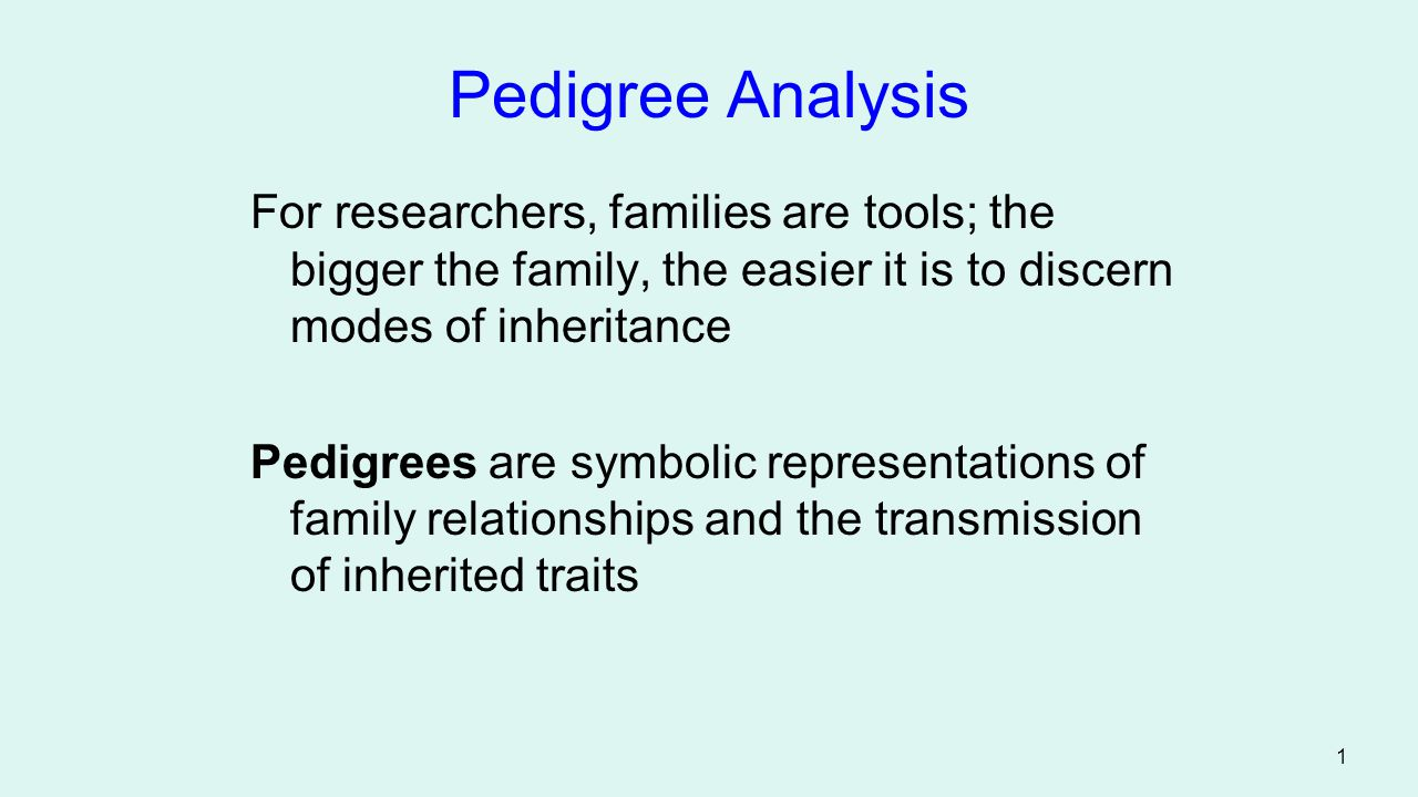Pedigree Analysis For researchers, families are tools; the bigger the family, the easier it is to discern modes of inheritance.