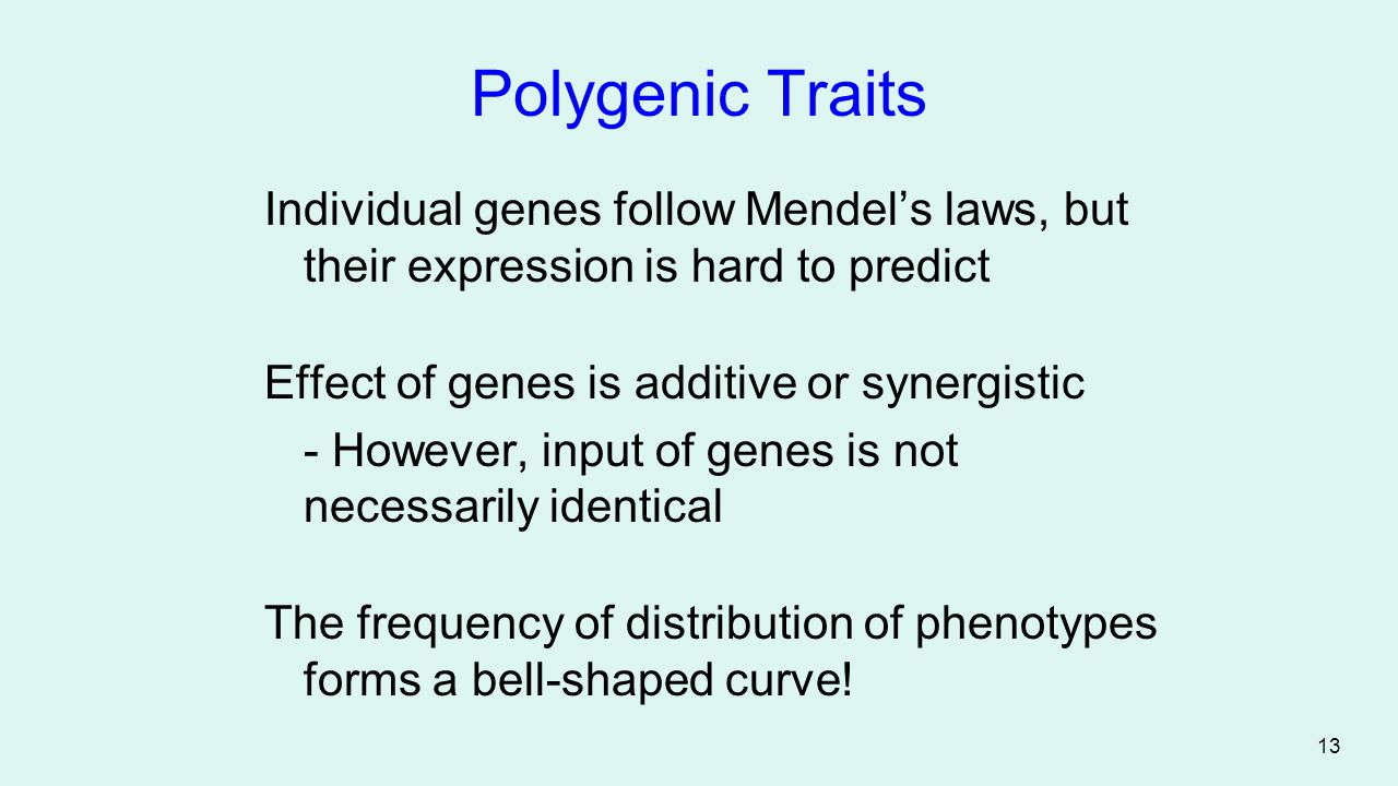 Polygenic Traits Individual genes follow Mendel's laws, but their expression is hard to predict. Effect of genes is additive or synergistic.