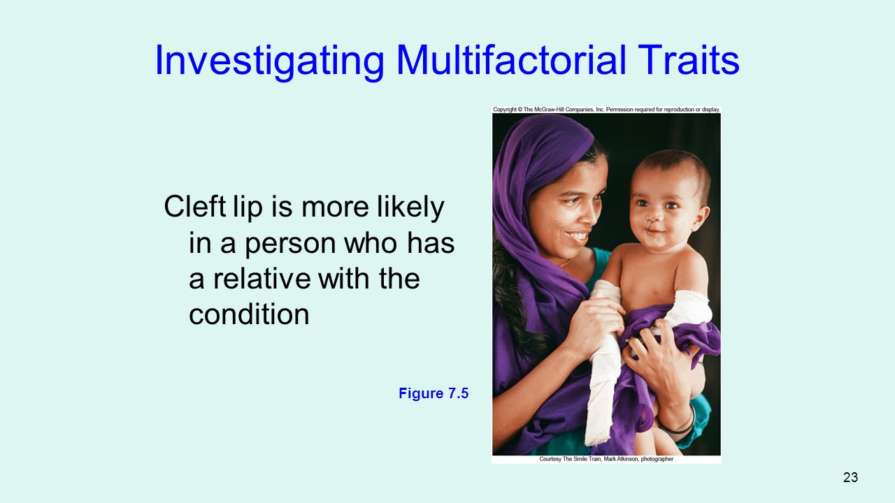 Investigating Multifactorial Traits