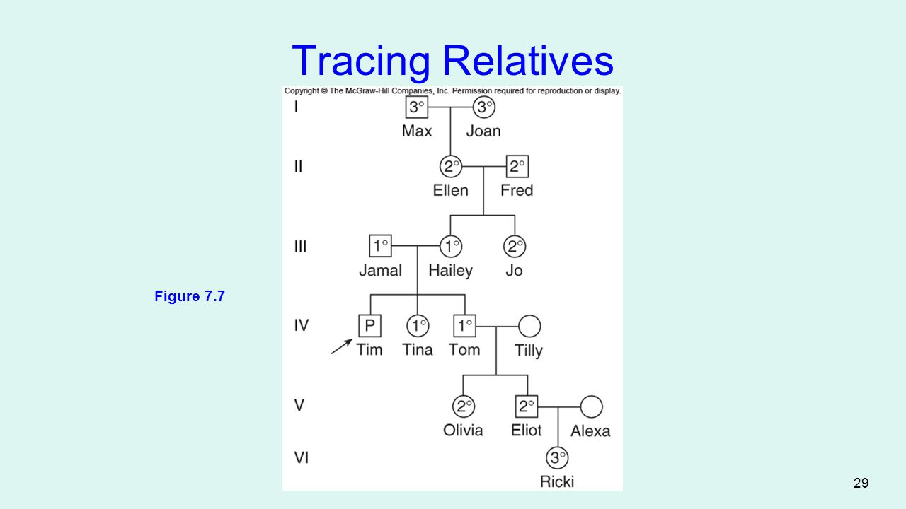 Tracing Relatives Figure 7.7 29