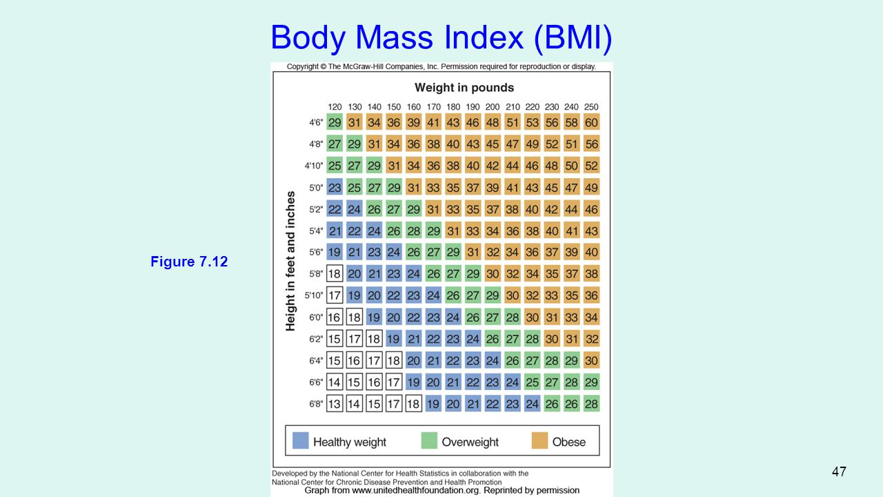 Body Mass Index (BMI) Figure 7.12 47
