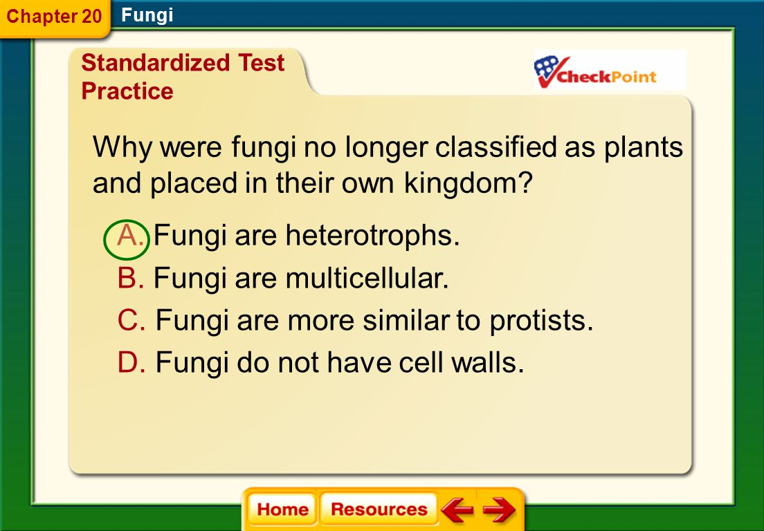 Why were fungi no longer classified as plants