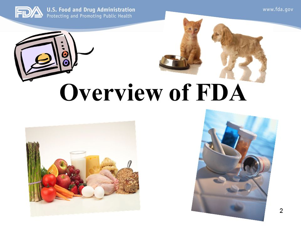 Overview of FDA 2