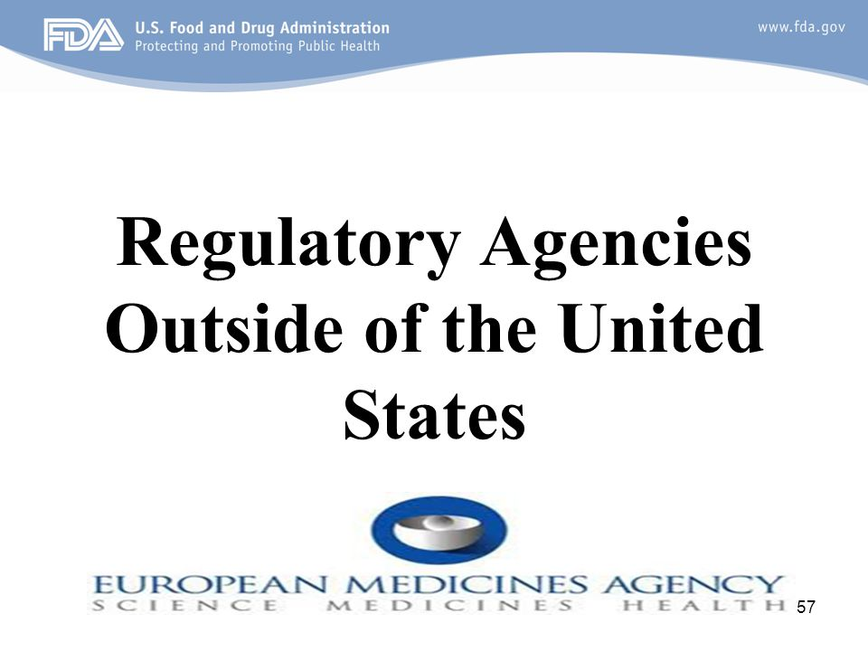 Regulatory Agencies Outside of the United States