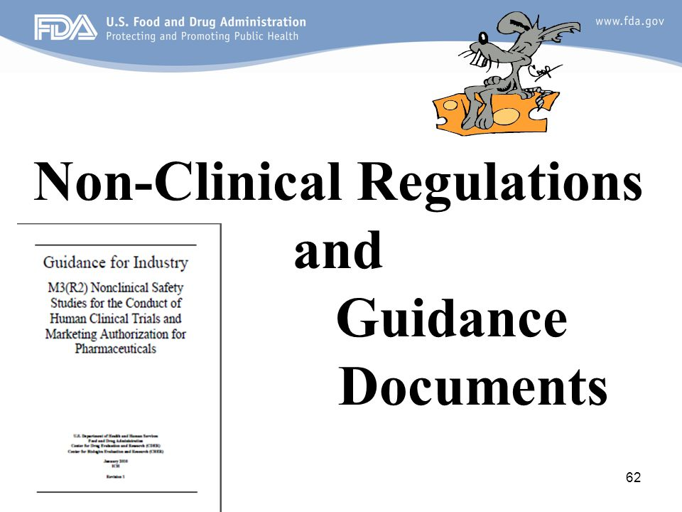 Non-Clinical Regulations and Guidance Documents