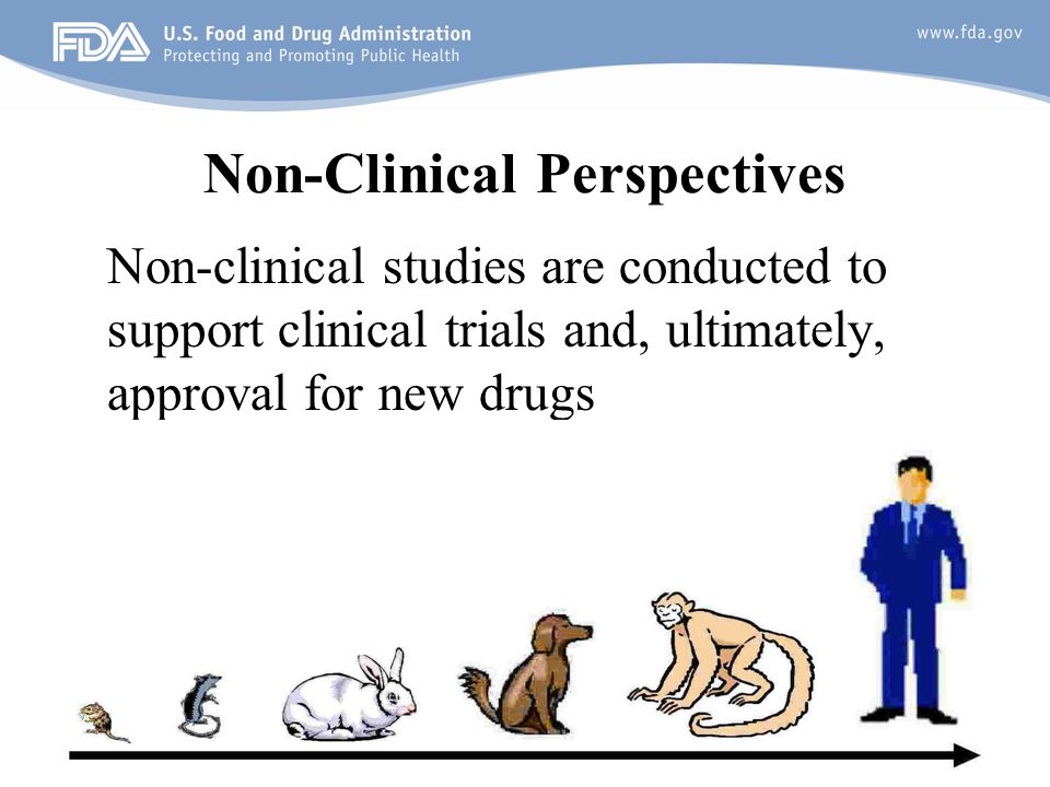 Non-Clinical Perspectives