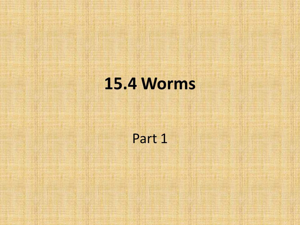 15.4 Worms Part 1