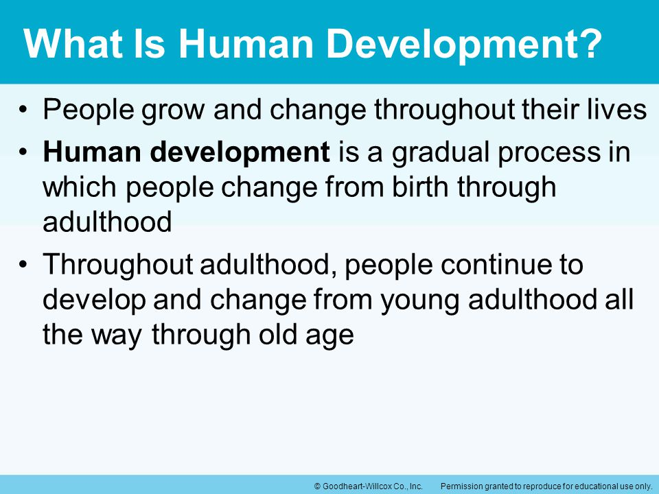 What Is Human Development