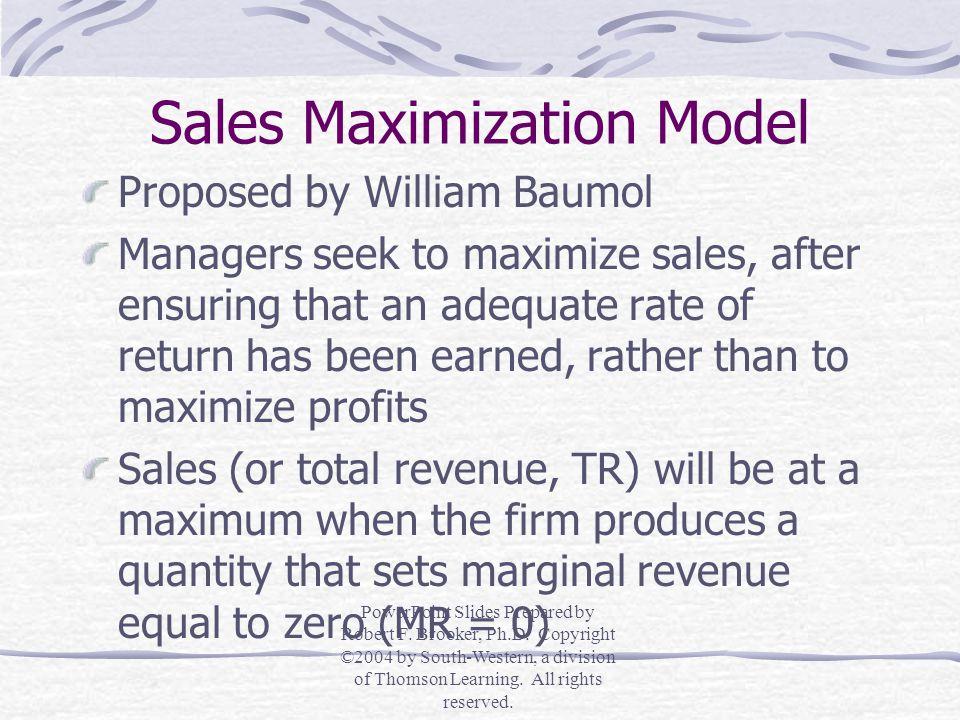 Sales Maximization Model