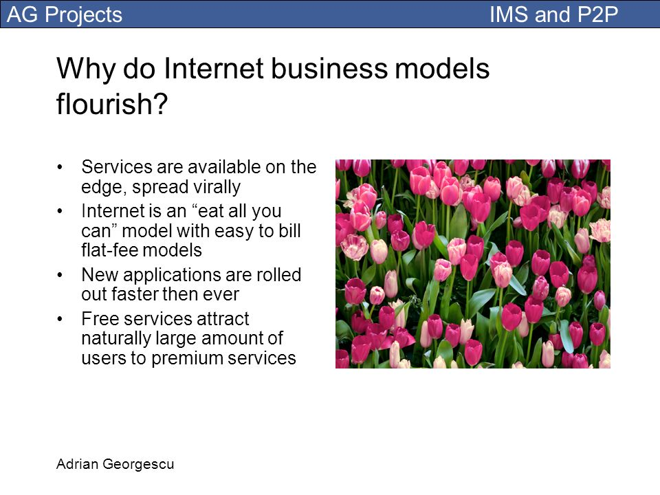 Why do Internet business models flourish