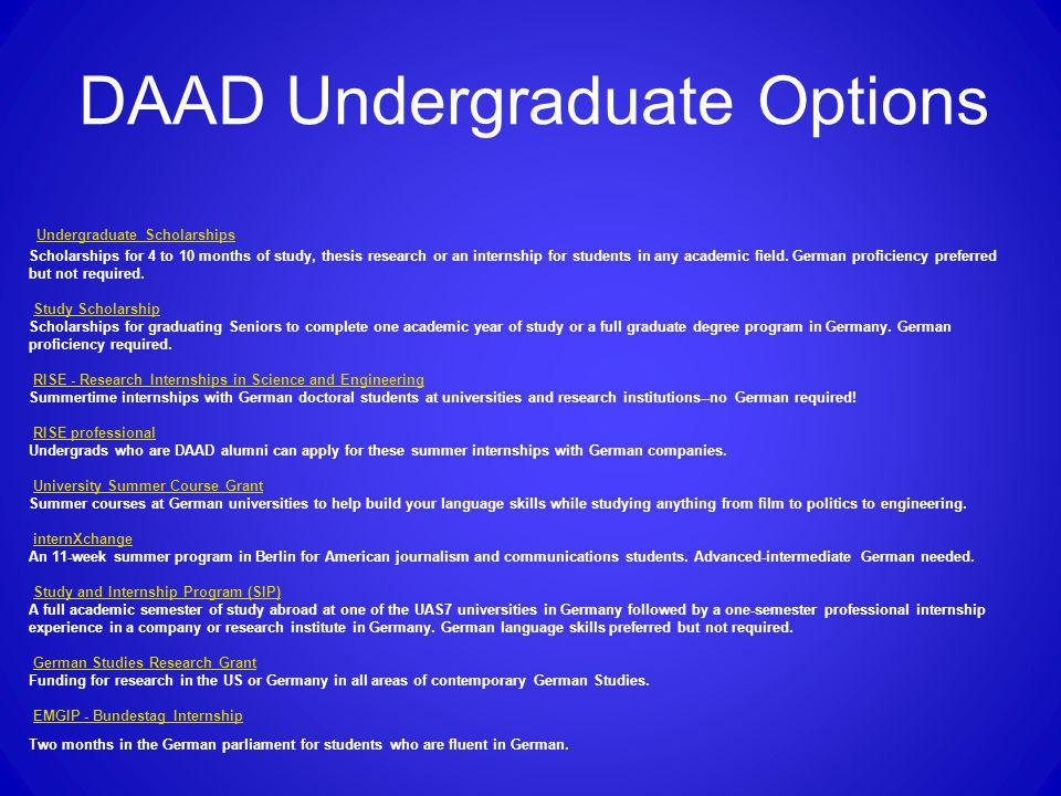 DAAD Undergraduate Options