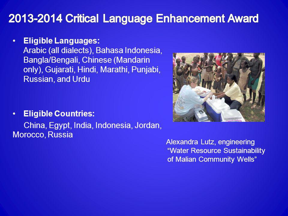2013-2014 Critical Language Enhancement Award