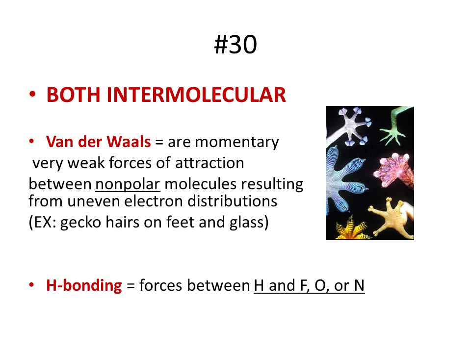 #30 BOTH INTERMOLECULAR Van der Waals = are momentary
