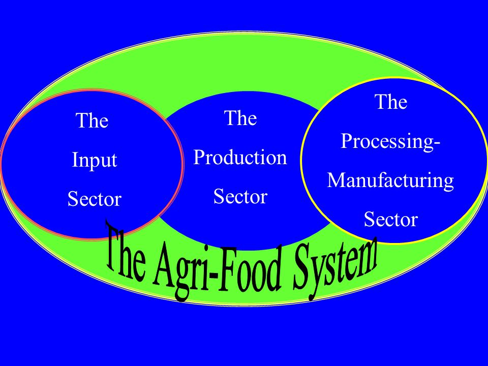 The Agri-Food System The Processing- The The Production Input