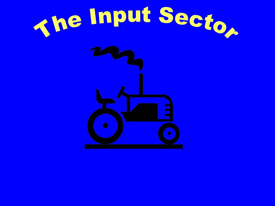 The Input Sector